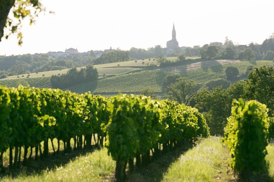 Bordeauxprof par le Conseil interprofessionnel du vin de Bordeaux