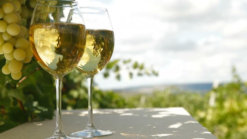 Tour d'horizon des vins blancs