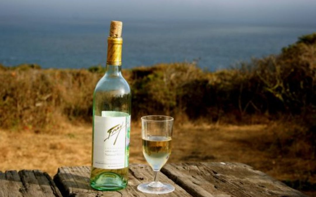 Le vin vegan s'installe en France