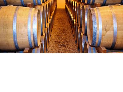 Cuve, barrique, fût : quel contenant de vinification choisir ?
