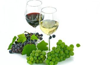 Différence entre vin blanc et vin rouge