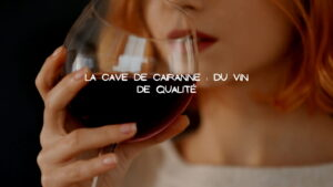 degustation vin de qualité