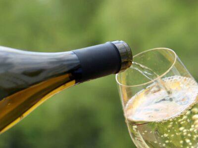 Tout sur le champagne