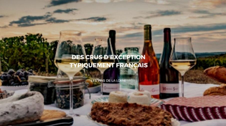 Les vins de la Loire: Une richesse gastronomique française