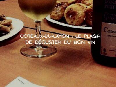 Partir à la découverte du Coteaux-du-layon, vin moelleux de la Loire