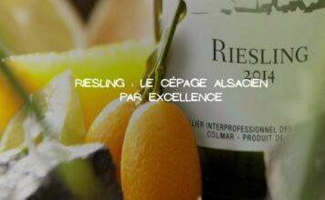 Le Riesling: La beauté du cépage de l'Alsace